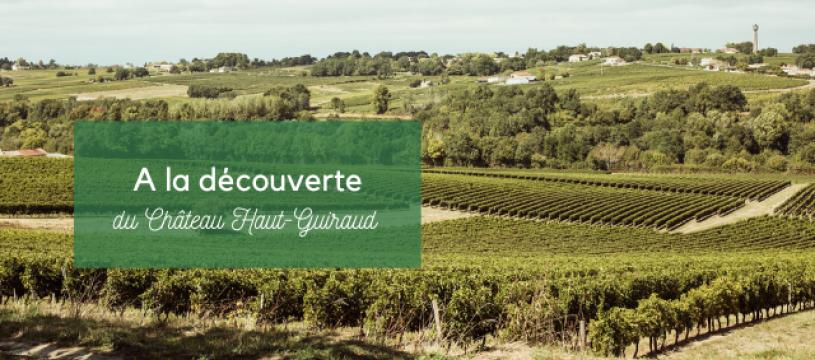 A la découverte du Château Haut Guiraud